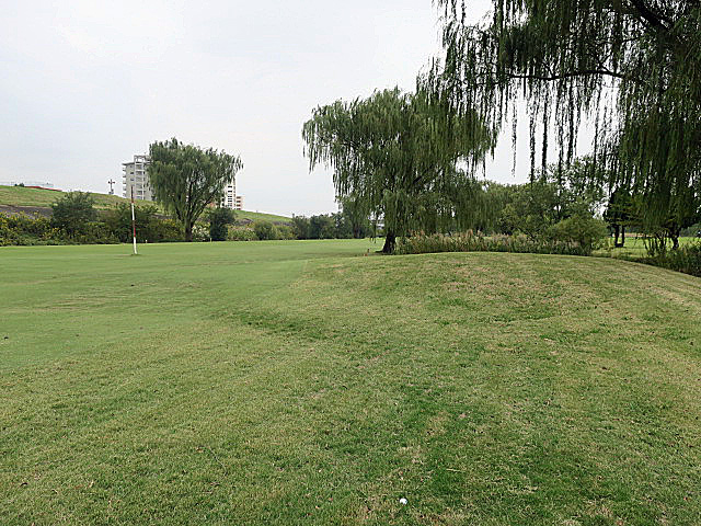 201610AKABANE GC NO12-2