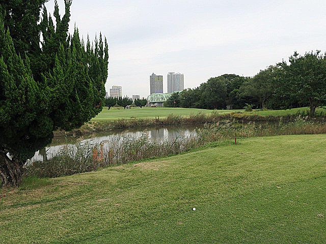 201610AKABANE GC NO5-2