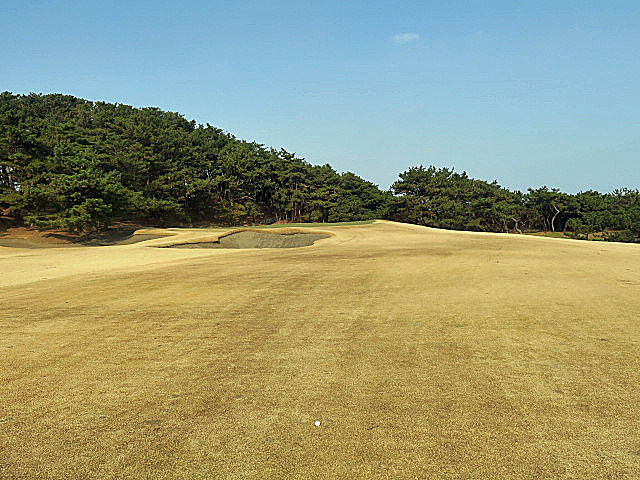 201612OHARAI GC NO10-3