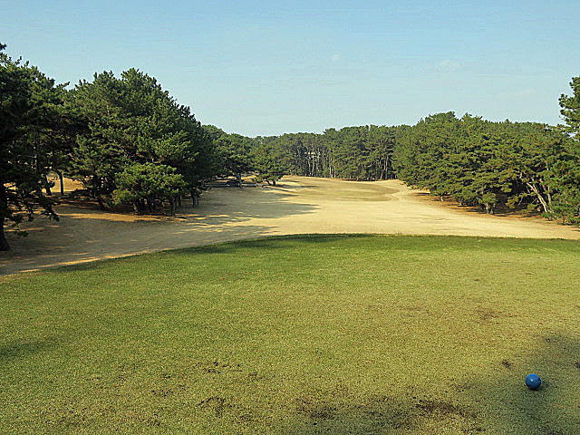 201612OHARAI GC NO11-1