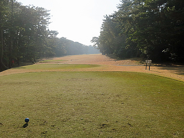 201612OHARAI GC NO12-1