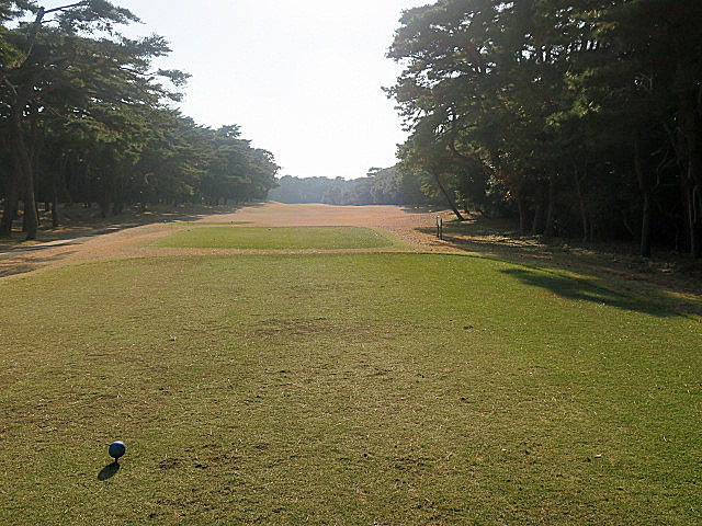 201612OHARAI GC NO13-1