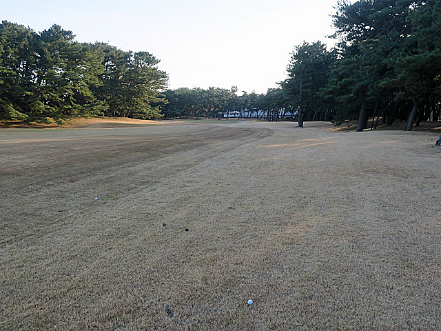 201612OHARAI GC NO18-2