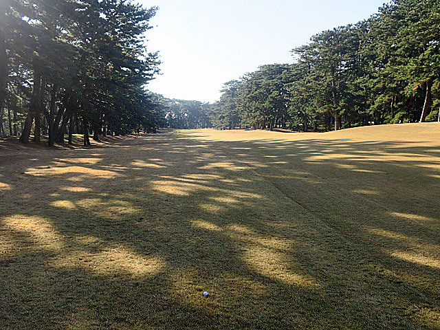 201612OHARAI GC NO3-2