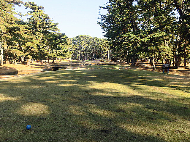 201612OHARAI GC NO4-1