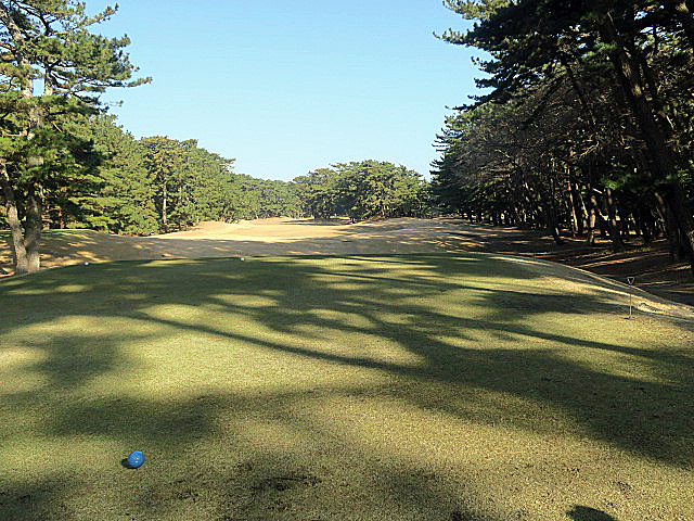 201612OHARAI GC NO5-1