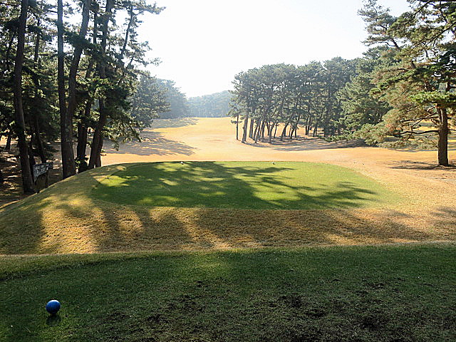 201612OHARAI GC NO6-1