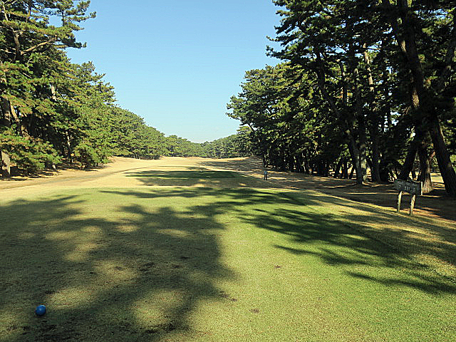 201612OHARAI GC NO7-1