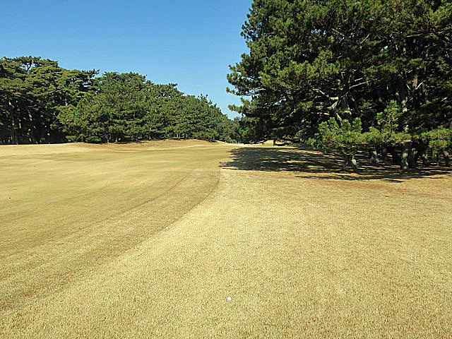 201612OHARAI GC NO7-2