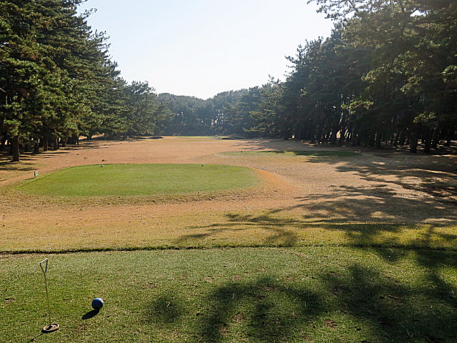 201612OHARAI GC NO8-1